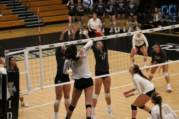 The Vandal Nation Volleyball Vandals Gain Experience